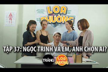 loa-phuong-37