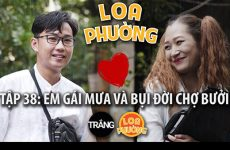 loa-phuong-38