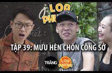 loa-phuong-39